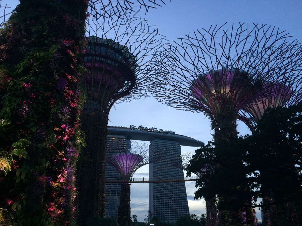 Gardens By The Bay e atrás o Hotel Marina Bay Sands